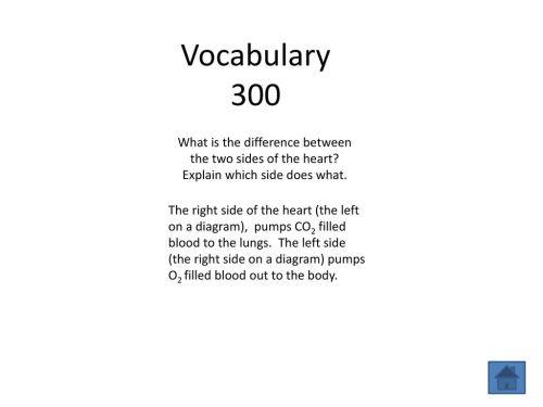 small resolution of 4 vocabulary