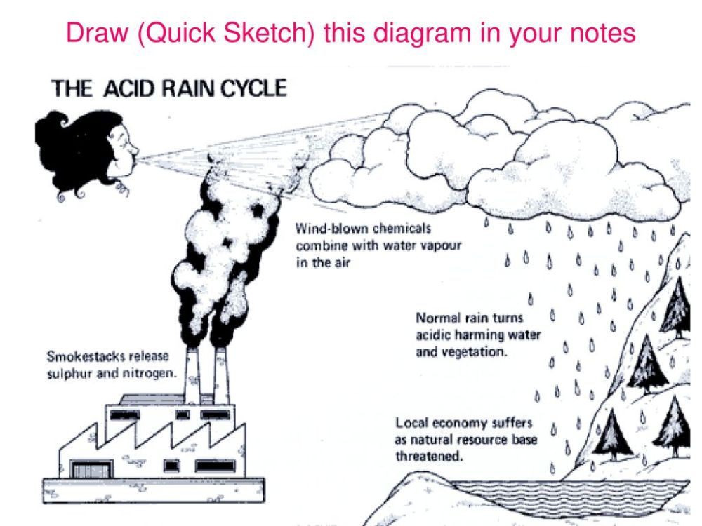 medium resolution of what causes acid rain 10 draw quick sketch this diagram in your notes