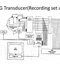 2 eeg transducer recording set up  [ 1024 x 768 Pixel ]