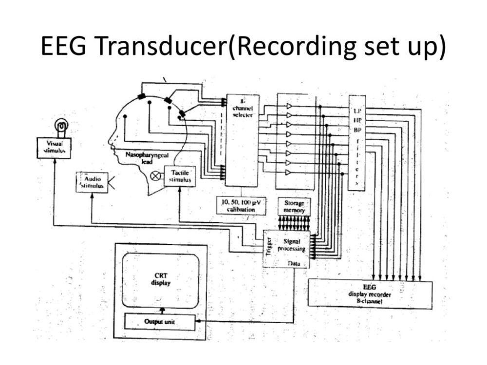 medium resolution of 2 eeg transducer recording set up