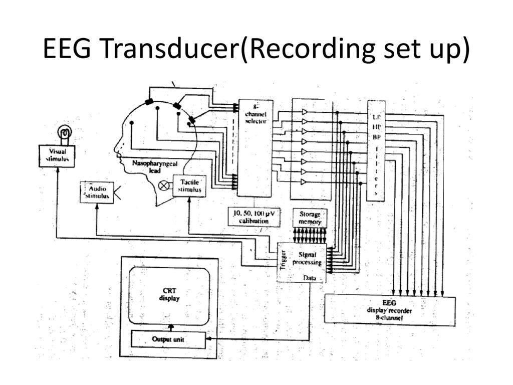 hight resolution of 2 eeg transducer recording set up