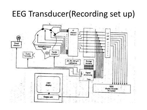 small resolution of 2 eeg transducer recording set up