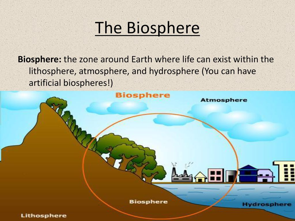 hydrosphere lithosphere atmosphere diagram holden vt audio wiring the biosphere and factors in ecosystems ppt download