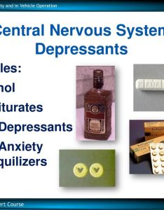 central nervous system depressants also session drugs in society and vehicle operation minutes ppt rh slideplayer