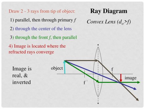 small resolution of 15 ray diagram