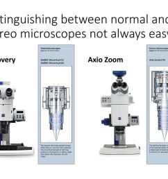 distinguishing between normal and stereo microscopes not always easy [ 1024 x 768 Pixel ]