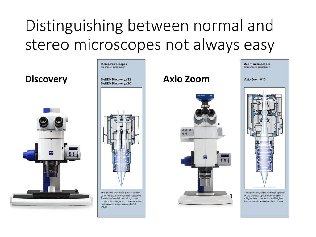 hight resolution of distinguishing between normal and stereo microscopes not always easy