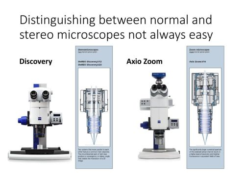 small resolution of distinguishing between normal and stereo microscopes not always easy