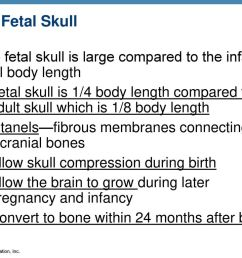 the fetal skull the fetal skull is large compared to the infant s total body length  [ 1024 x 768 Pixel ]