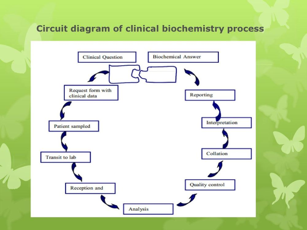 medium resolution of circuit diagram of clinical biochemistry process 18 circuit