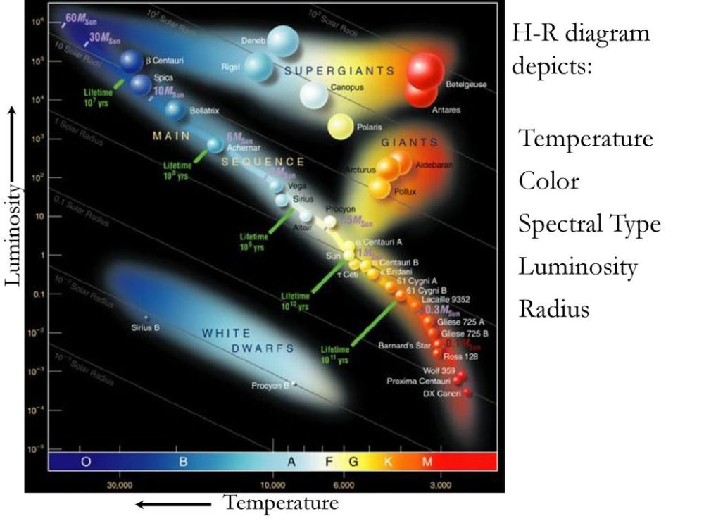 medium resolution of 26 h r diagram depicts temperature color spectral type luminosity radius