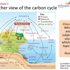 The Carbon Cycle Diagram Gcse Domestic Electrical Wiring Diagrams 1 System Concepts Ppt Download Another View Of