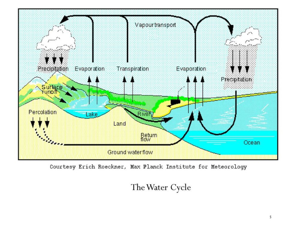 medium resolution of 5 the water cycle
