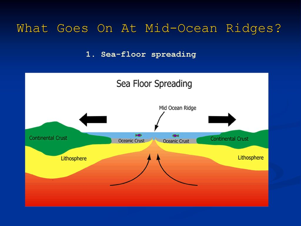 hight resolution of sea floor spreading what goes on at mid ocean ridges