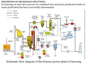 Biomass Power Plant Flow Diagram | Wiring Library