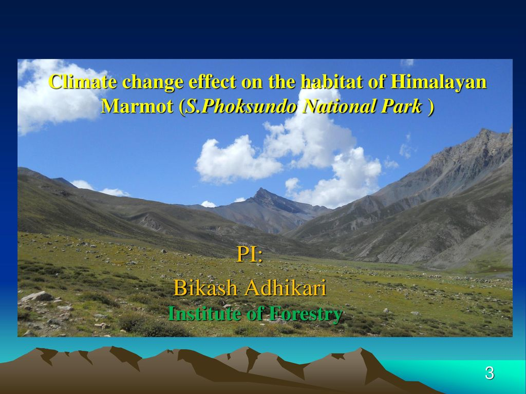 Himalaya Halle Welcome ! Namaste !. - Ppt Download