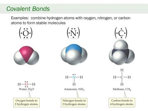 small resolution of 10 covalent bonds examples combine hydrogen atoms with oxygen nitrogen or carbon atoms to form stable molecules