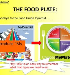 the food plate and introduce my plate  [ 1024 x 768 Pixel ]