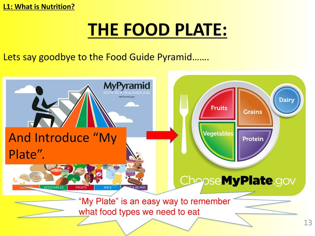 hight resolution of the food plate and introduce my plate