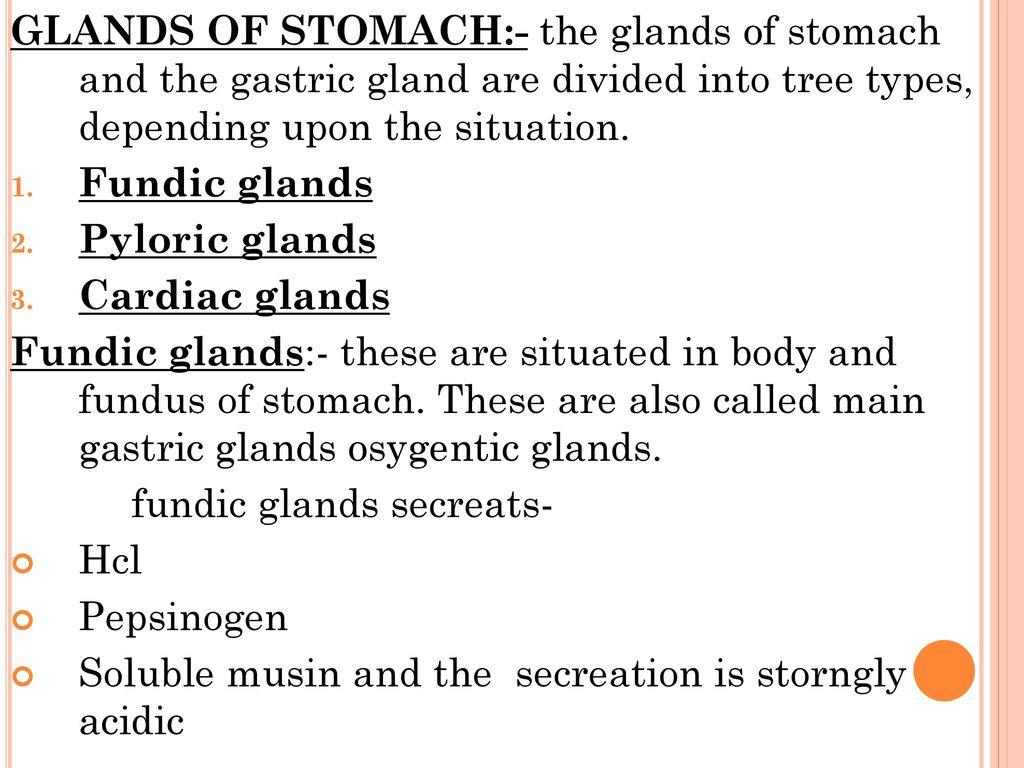 Gastro Intestinal Tract