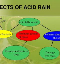 effects of acid rain important to nitrogen cycle acid falls to soil [ 1024 x 768 Pixel ]