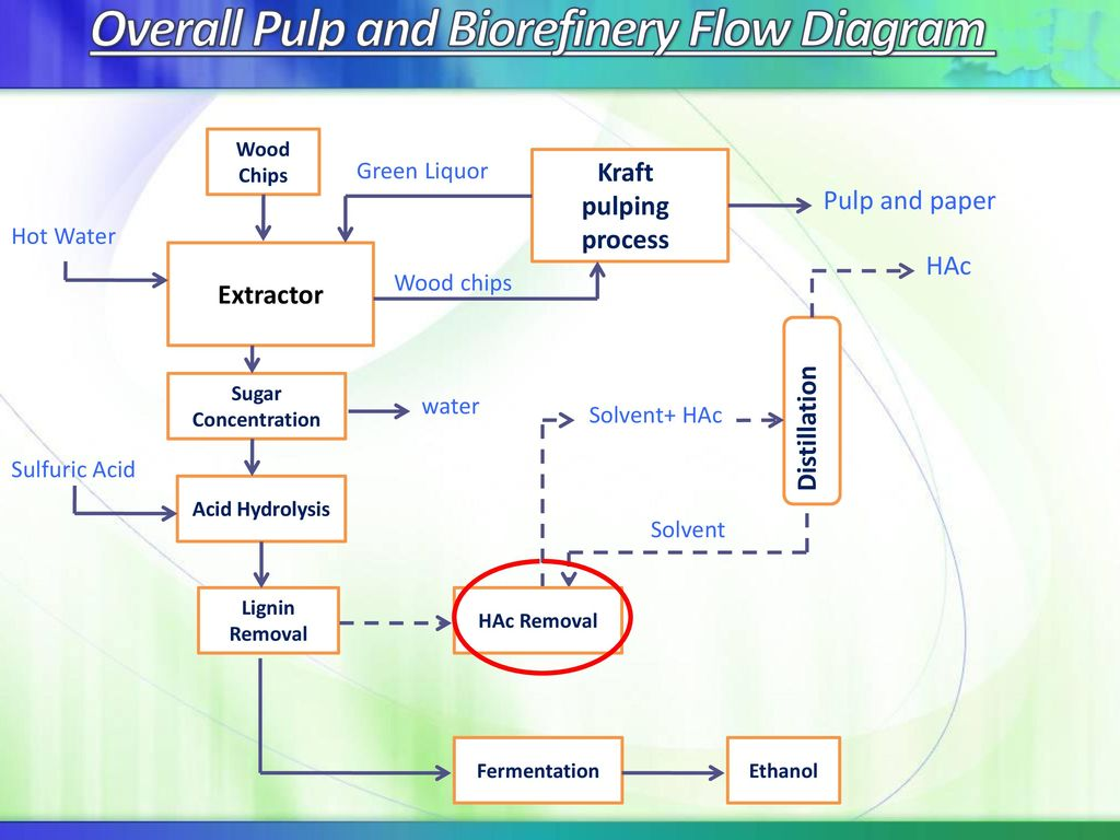 hight resolution of overall pulp and biorefinery flow diagram