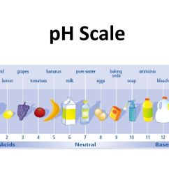 1 ph scale [ 1024 x 768 Pixel ]