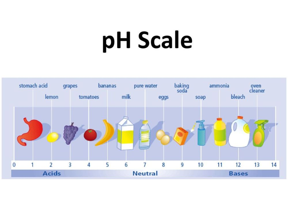 medium resolution of 1 ph scale