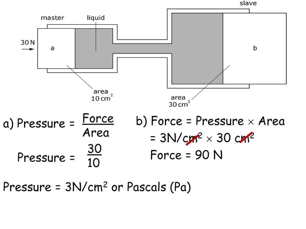 medium resolution of force area b force pressure area 3n cm2