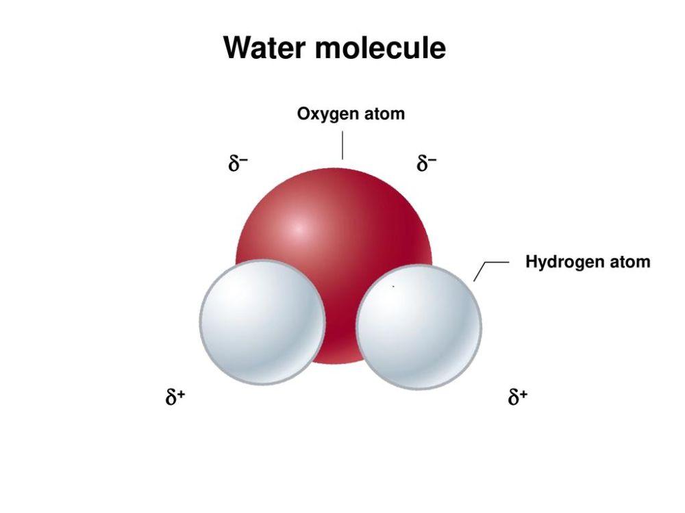 medium resolution of 32 water molecule oxygen atom hydrogen atom