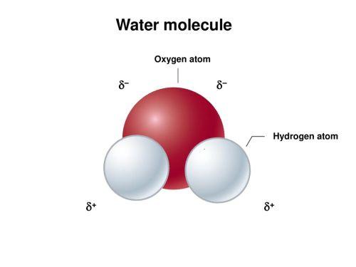 small resolution of 32 water molecule oxygen atom hydrogen atom