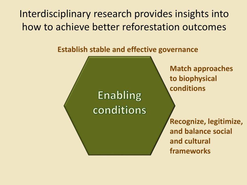 medium resolution of 5 establish
