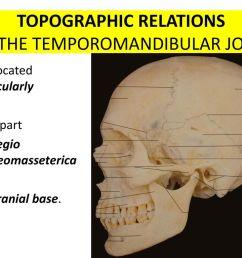 topographic relations of the temporomandibular joint [ 1024 x 768 Pixel ]