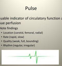 49 pulse  [ 1024 x 768 Pixel ]