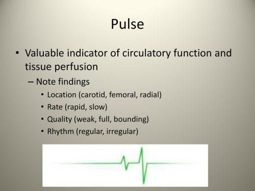 small resolution of 49 pulse