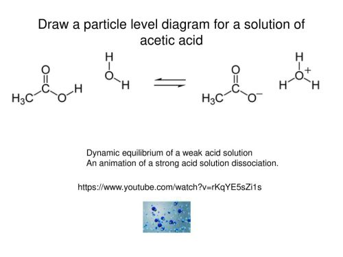 small resolution of draw a particle level diagram for a solution of acetic acid