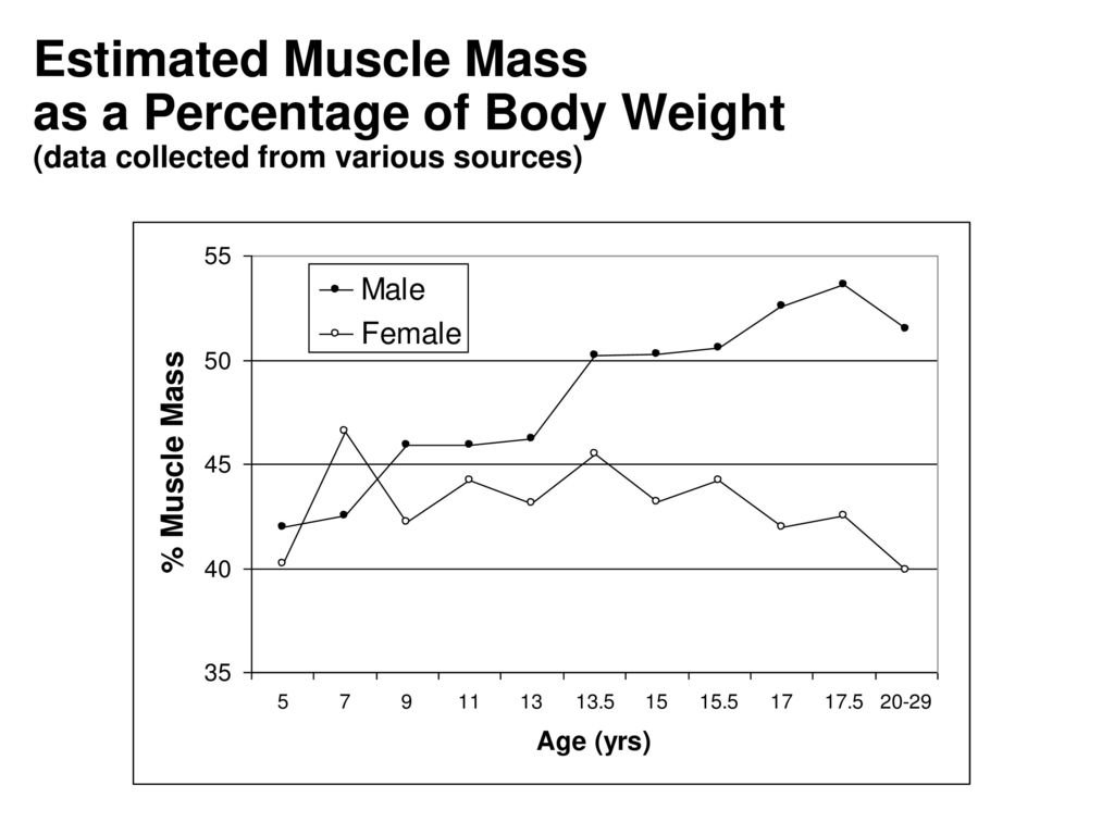 hight resolution of 20 estimated muscle mass as a percentage of body weight data collected from various sources