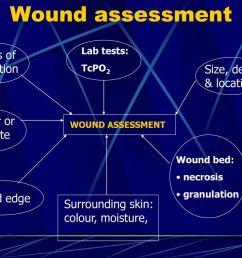 20 wound assessment  [ 1024 x 768 Pixel ]