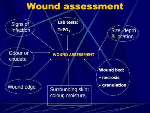 small resolution of 20 wound assessment