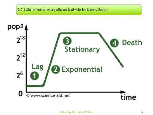 small resolution of ib biology sfp mark polko