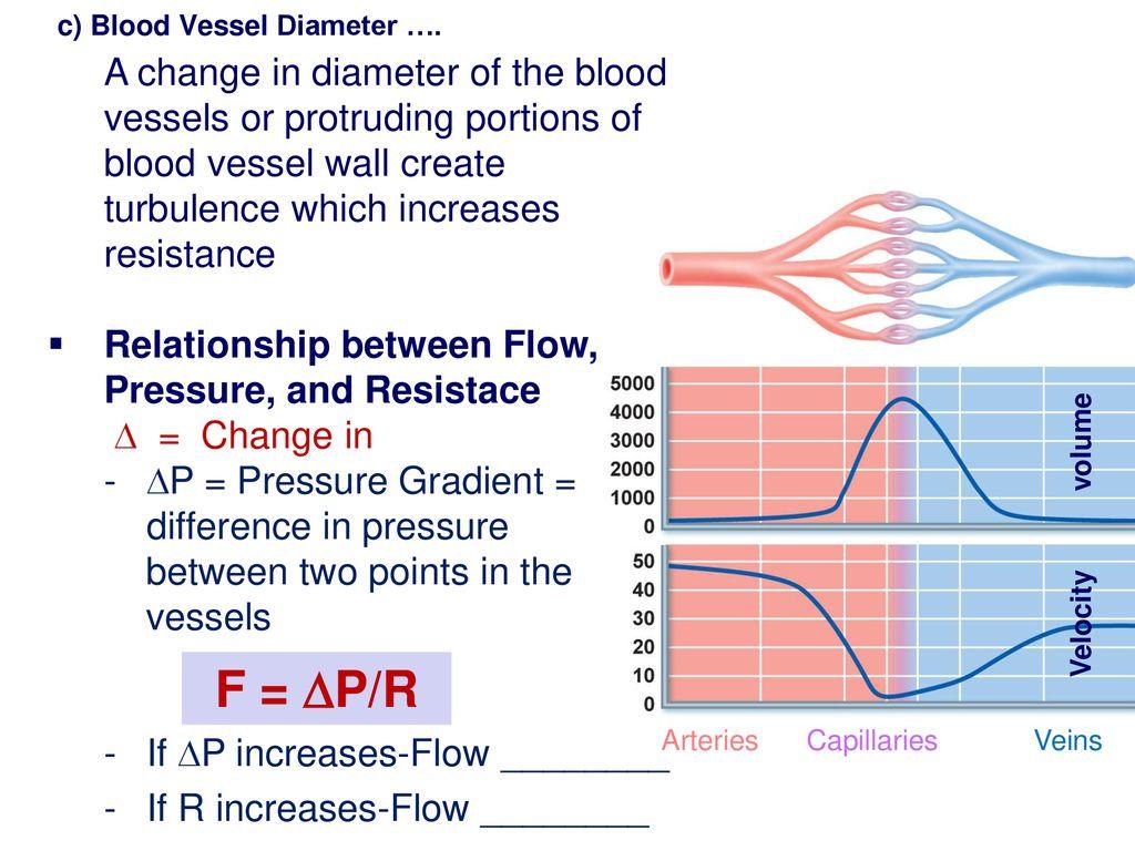 hight resolution of c blood vessel diameter