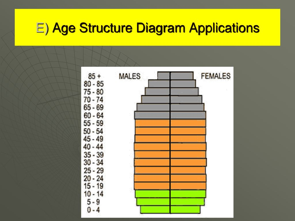 hight resolution of 12 e age structure diagram applications