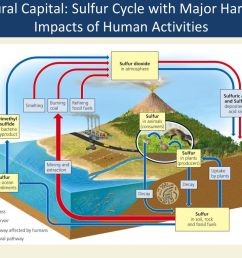 natural capital sulfur cycle with major harmful impacts of human activities [ 1024 x 768 Pixel ]