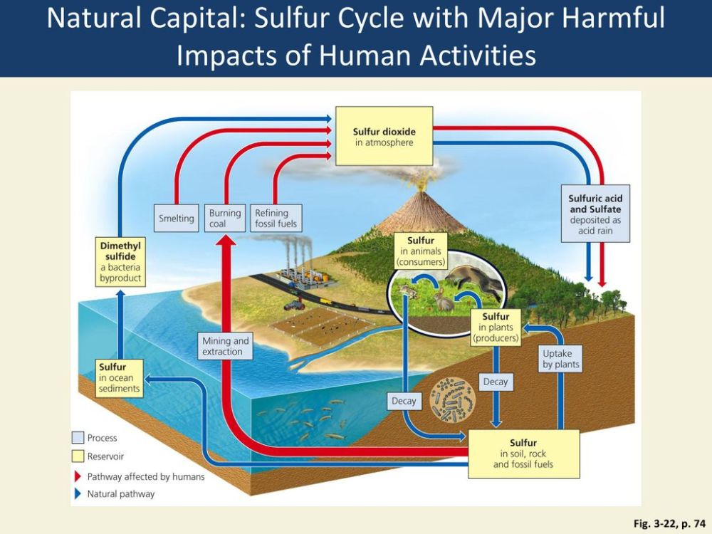 medium resolution of natural capital sulfur cycle with major harmful impacts of human activities