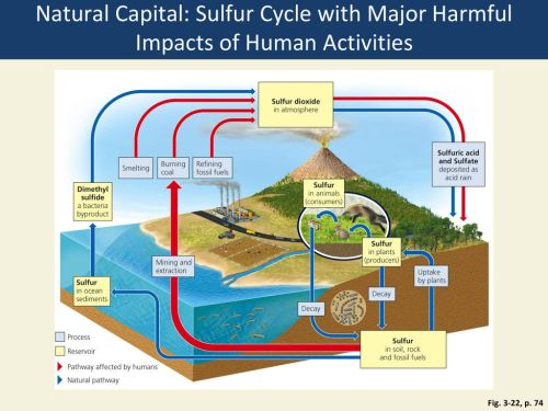 small resolution of natural capital sulfur cycle with major harmful impacts of human activities