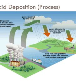 24 acid deposition process  [ 1024 x 768 Pixel ]