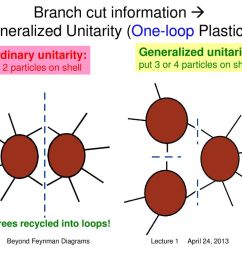branch cut information generalized unitarity one loop plasticity  [ 1024 x 768 Pixel ]