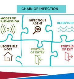 3 chain of infection this diagram  [ 1024 x 768 Pixel ]