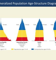 generalized population age structure diagrams [ 1024 x 768 Pixel ]