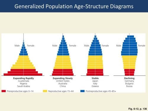 small resolution of generalized population age structure diagrams